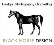 Black Horse Design (Merseyside Horse)
