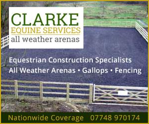 Clarke Equine Services 2021 (Merseyside Horse)