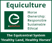 Equiculture 01 (Merseyside Horse)