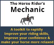 The Horse Rider's Mechanic 01 (Merseyside Horse)