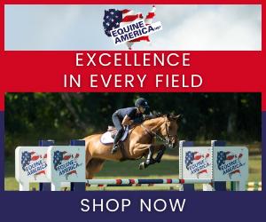 Equine America (Merseyside Horse)