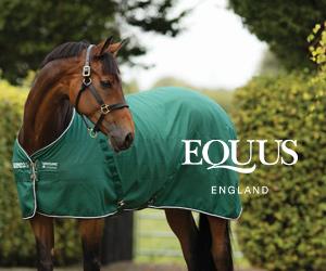 Equus (Merseyside Horse)