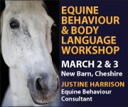 Justine Harrison Workshop March 2019 (Merseyside Horse)